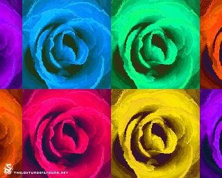 Andy's Rose - Bec 'imjustpickle' Cawthorne